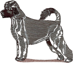 Portugese Water Dog embroidery design